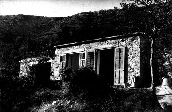 zuljana_1975
